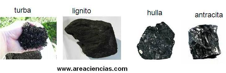 tipos de carbones