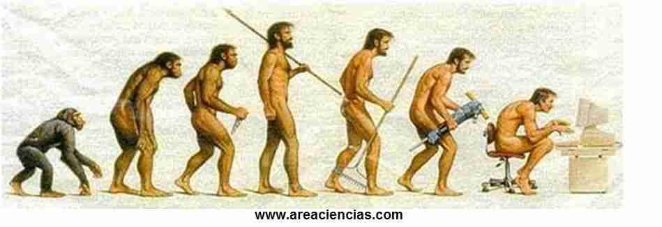 evolucion de los hombres