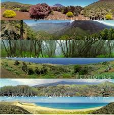 http://www.areaciencias.com/biologia/habitat.html