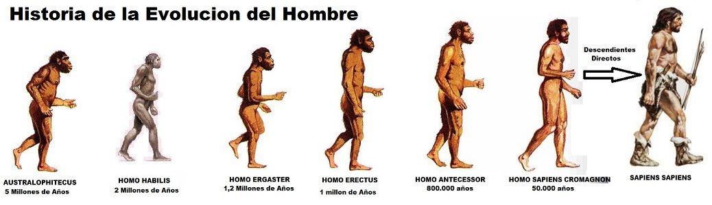 historia de la evolucion del hombre