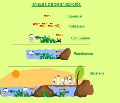 Biología Educativa