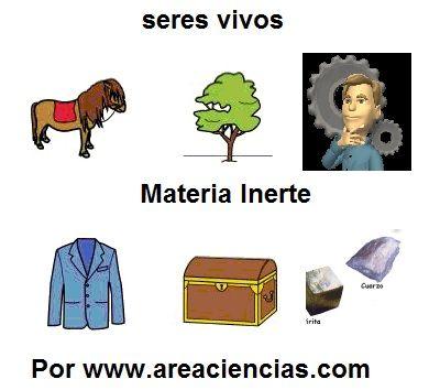 http://www.areaciencias.com/biologia/seres-vivos-y-no-vivos.html