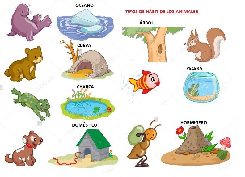 Que significa habitat y tipos de habitat aprende f cil for Medio en el que habitan los arboles