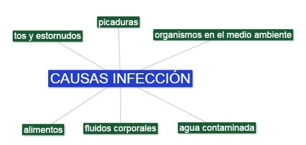 transmision enfermedades infecciosas