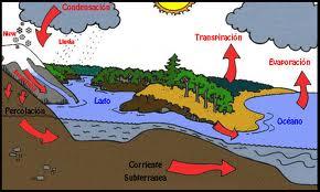 ciclo del agua.jpg