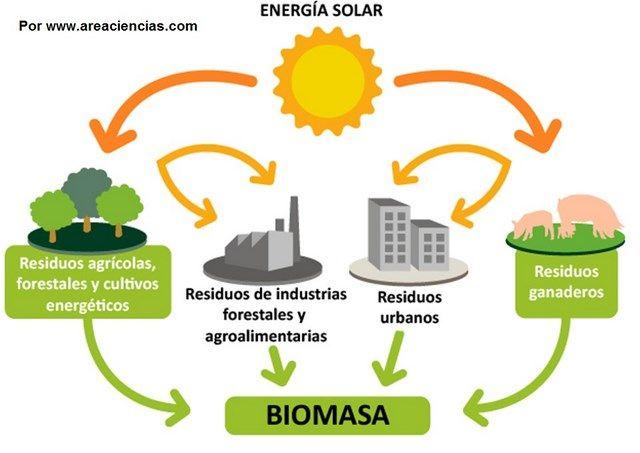 la biomasa