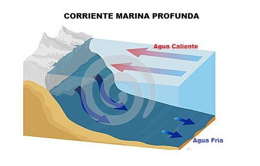 corriente marina profunda