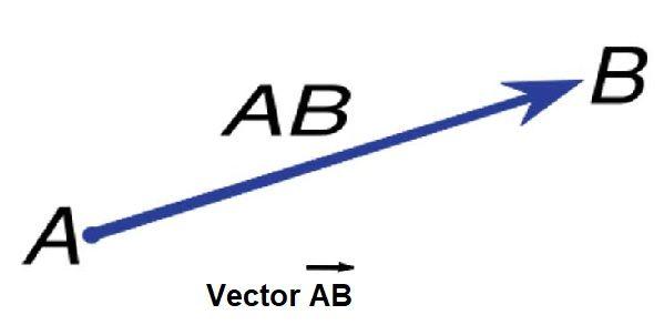 que es un vector
