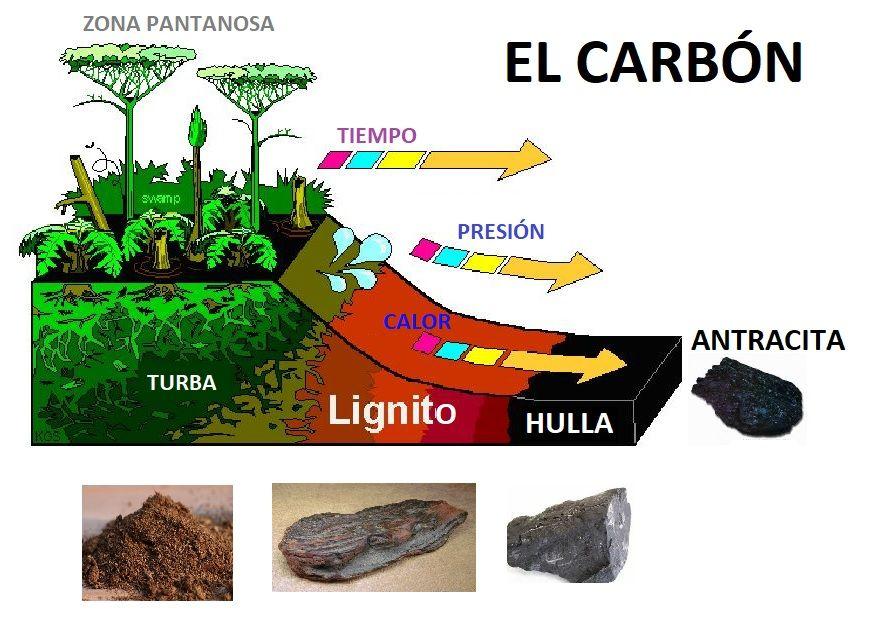 EL CARBON - AreaCiencias