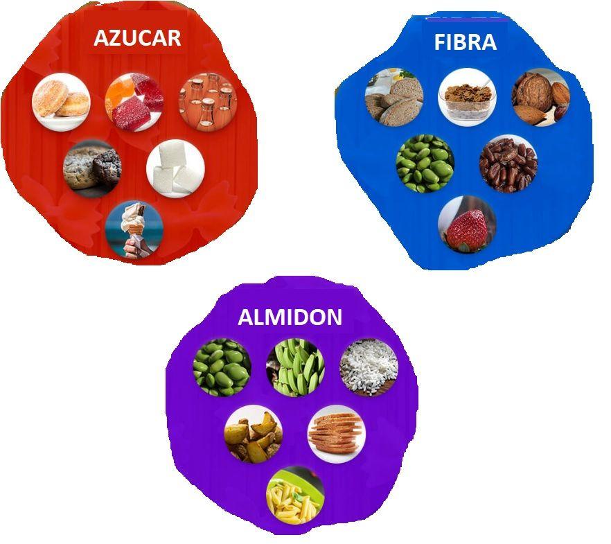 azucar fibra y almidon