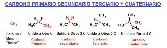 Carbono primario secundario terciario