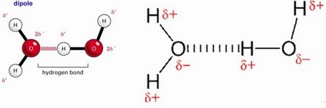 dipolo-dipolo agua oxigeno