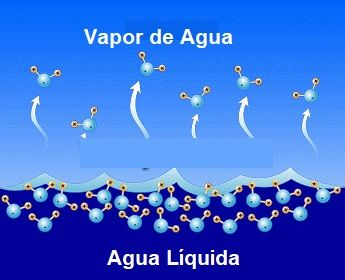 moleculas de agua en estado gaseoso