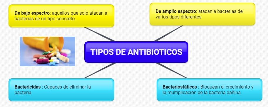 tipos de antibioticos