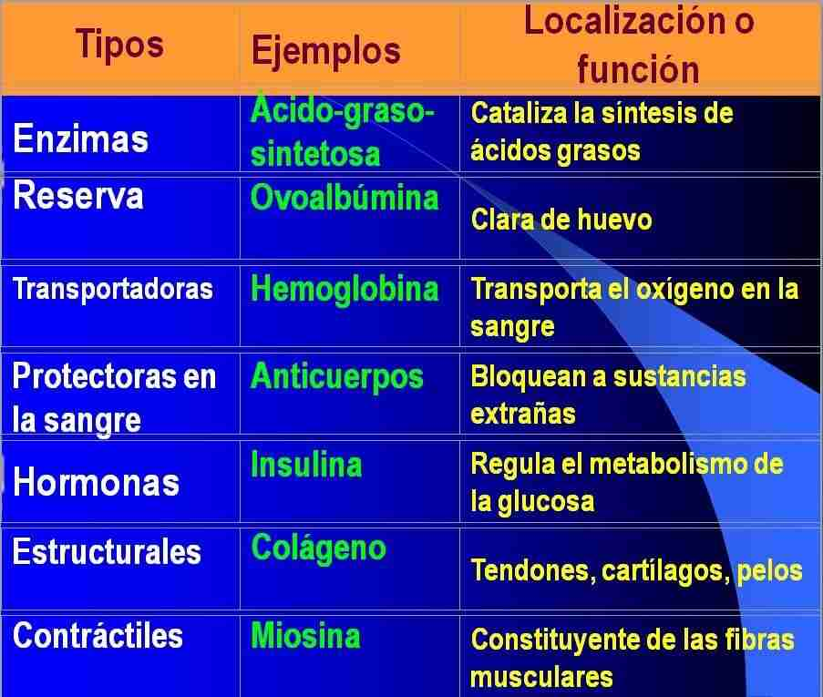tipos de proteinas